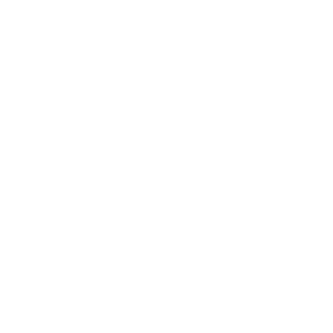 Diligence Trading